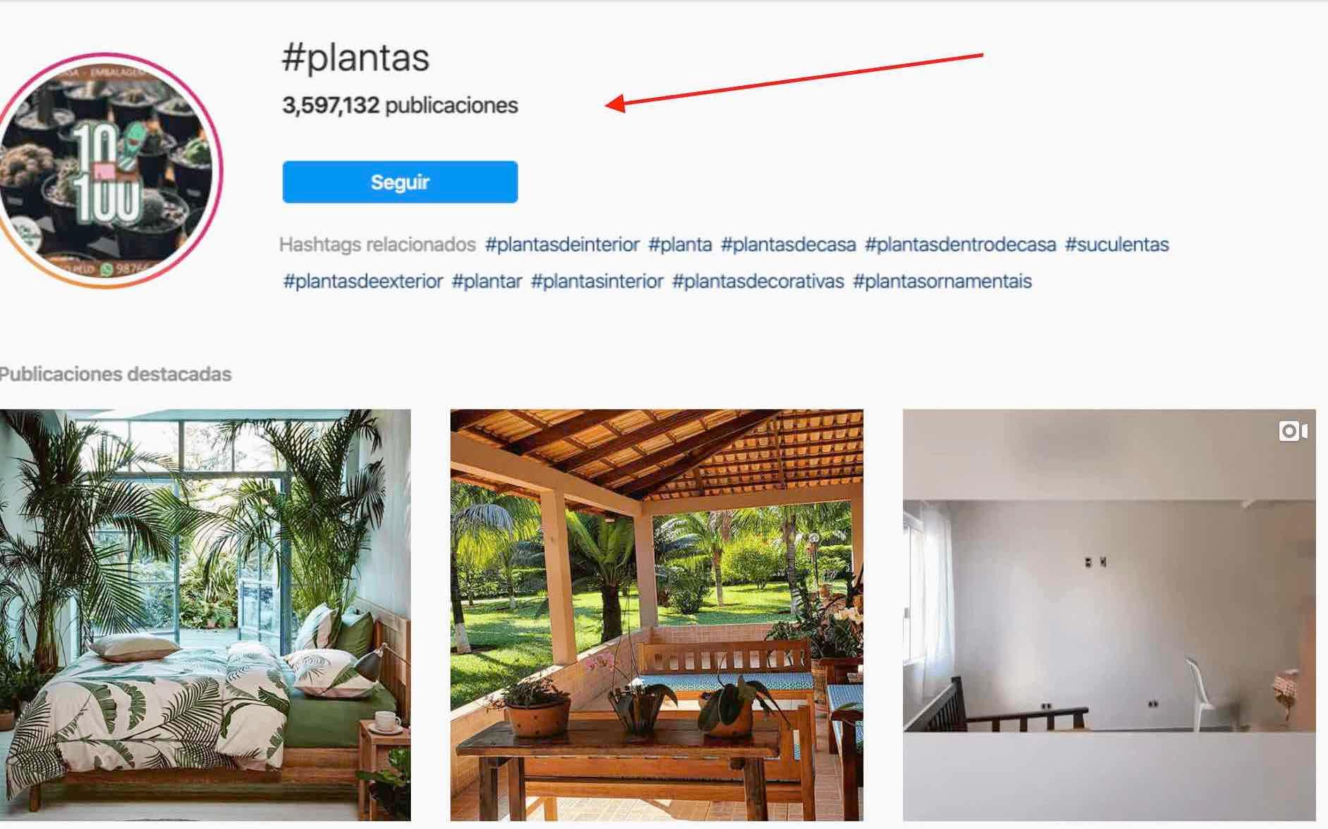 Ejemplo prospectar en instagram con hashtags